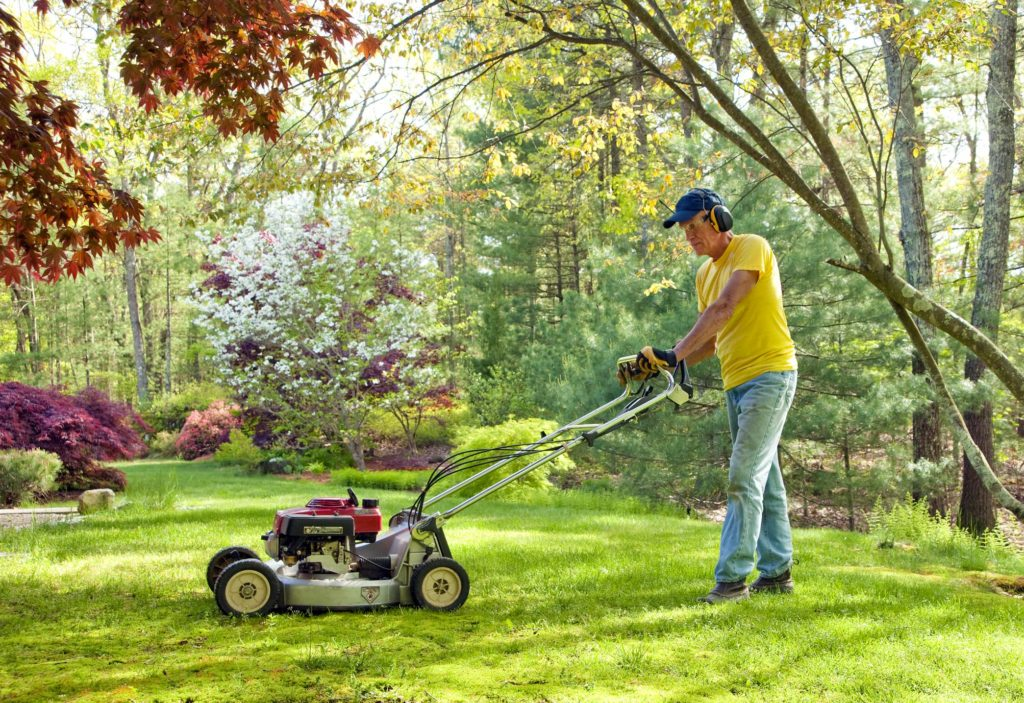 Our Lawn Care Services