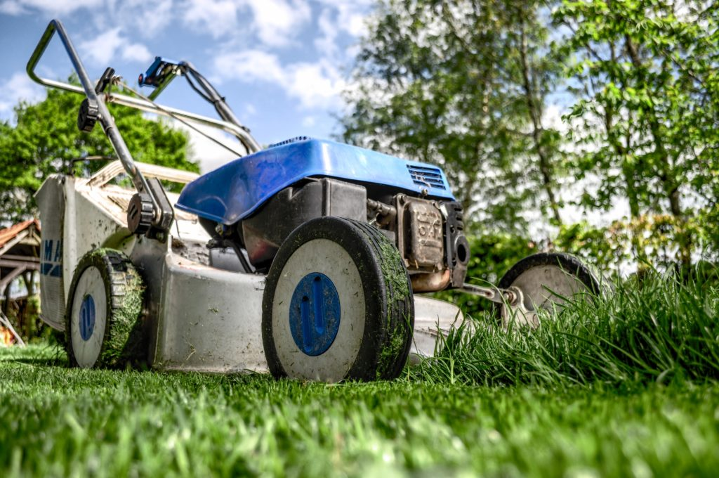 Blue lawn mower for lawn mowing